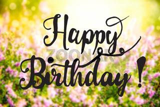 Sunny Erica Flower Field, Calligraphy Happy Birthday