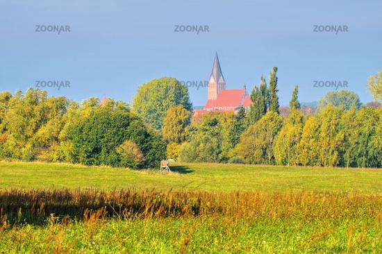 Barth Landschaft mit Kirche, alte Stadt am Bodden in Deutschland - Barth landscape and church, an old town on the Bodden in Germany