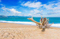 Scenic beautiful view of Nha Trang beach