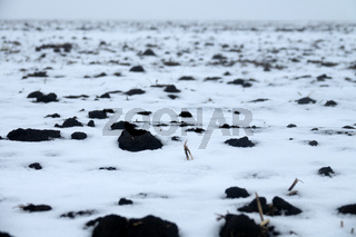 Fog after snowfall on arable land and winter in farmland