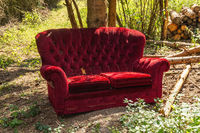 Old red sofa in the forest