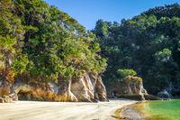 Creek at sunset in Abel Tasman National Park, New Zealand