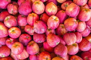 Many fresh red yellow apples on market