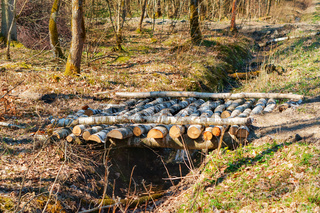 bridge over a ditch in the forest, bridge of birch logs