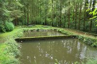 Trout ponds in the Black Forest
