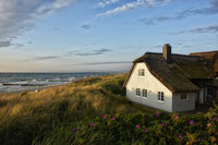 baltic sea resort Ahrenshoop