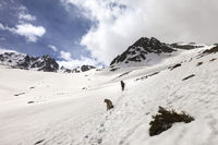 Dog and hiker in snowy mountains