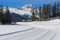 Cross-country skiing trails on the frozen lake Champfersee, Engadin valley, Grisons, Switzerland