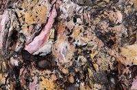 Rock surface - Liguria - Italy