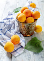 Ripe apricots in a metal bucket.