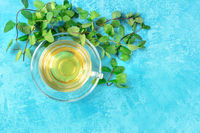 Mint tea cup, shot from the top on a blue background with vibrant fresh leaves and a place for text