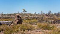 Deforested Land In Australia