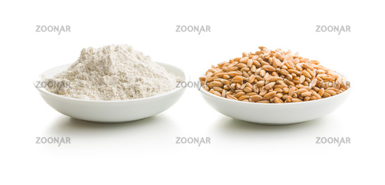 Whole grain wheat flour and wheat grains.