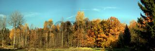 Panorama goldener Oktober