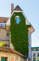 tall narrow house in the city overgrown with vines