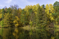 Autumn, forest on the background of the pond