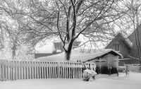 Winter in the Vogtland - The wheelbarrow at the fence