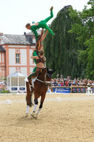 vaulting competition,horse show wiesbaden 2019