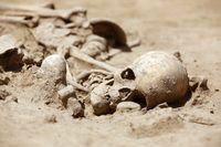 Skeleton skull archeology