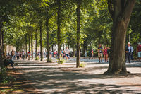People waling in public park on sunny, summer day in Berlin, Germany