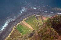 Steilklippe in Camara de Lobos auf der Insel Madeira, Portugal