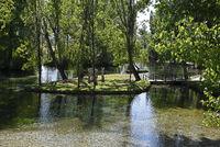 Pond, Fonti del Clitunno, nature park, Campello sul Clitunno, Province of Perugia, Italy, Europe