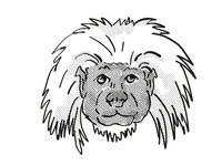 Cottontop Tamarin Endangered Wildlife Cartoon Retro Drawing