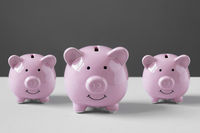 piggy bank or piggybank or money box family