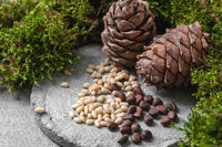 Pine cones and nuts on a gray concrete background.