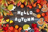Colorful Autumn Decoration, Text Hello Autumn, Wooden Background