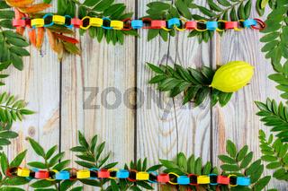 Etrog for Jewish holiday of sukkot festival
