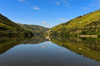 The Douro River near Pinhao, Douro Valley, Portugal