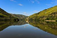 Der Fluss Douro bei Pinhao
