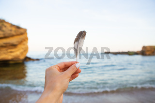Girl holds a feather of a bird in the background of the sea. Beautiful sunset. Close-up