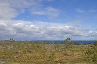 43/5000 Moorland on the Atlantic island Tustna
