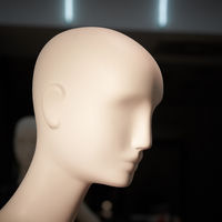 Head of a mannequin in a shop window