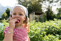 cute young girl eating a radish she just harvested in her vegetable patch
