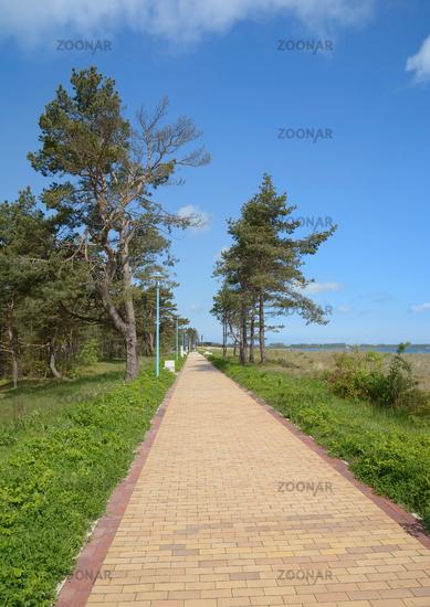 Footpath along the Beach of Juliusruh at baltic Sea,Ruegen,Mecklenburg western Pomerania,Germany