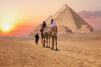 Tourists on camels near the Great Pyramids of Giza, Egypt