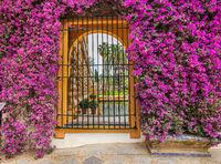 Beautiful view of the castle Alcazar in Sevilla. Spain