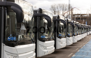 New modern busses on LPG