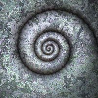 petrification spiral