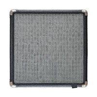 Isolated Guitar Amplifier Speaker