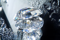 Crystal Shaell And A Pearl On A Glass