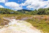 geothermal activity at Rotorua in New Zealand