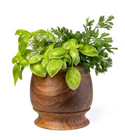 Fresh spices and herbs in mortar