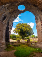 Villa Adriana - Rome Tivoli - Italy -  large tree seen through  large chasm on walls of ancient Roman palace with  circle-shaped hole on ceiling