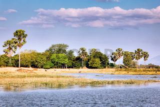 Landschaft am Shire, Liwonde Nationalpark, Malawi | Landscape at Shire River, Liwonde National Park, Malawi