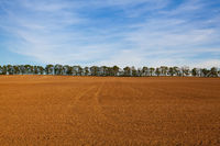 Autumn scenery. The field after harvesting in sunny day.Czech Republic