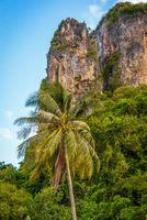 Famous Phatthalung rock